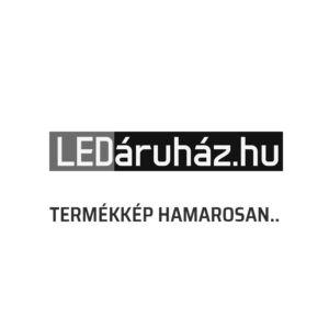 Philips Herb IR kültéri falra szerelhető mozgásérzékelős LED lámpa, inox, 1 x 6W, 2700K melegfehér, 17299/47/16
